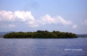 One of the islands at Batu Islands District