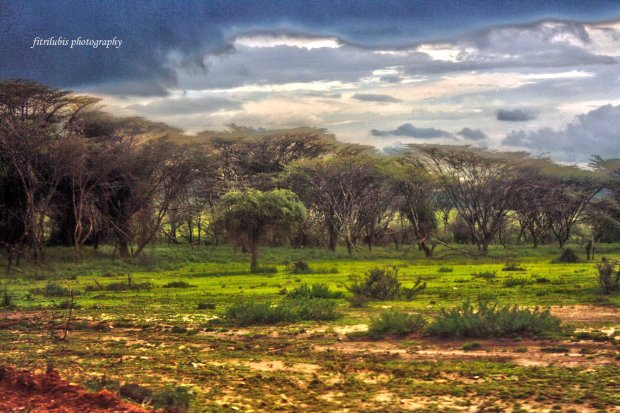 On the way to Maasai Mara