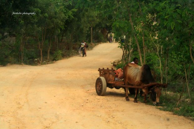In Mangapwani village
