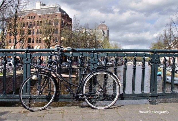 Bike is everywhere