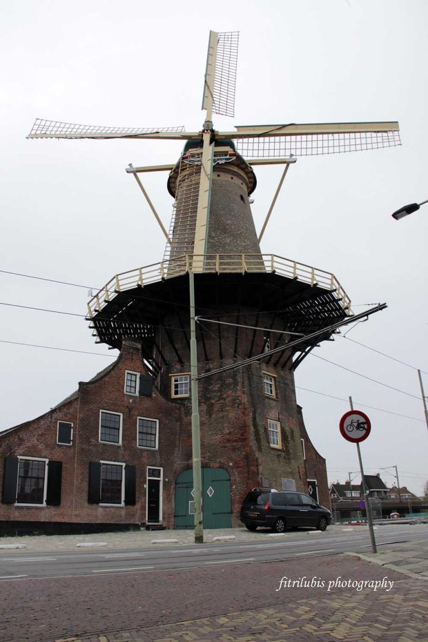 The only windmill that I could find in Delft