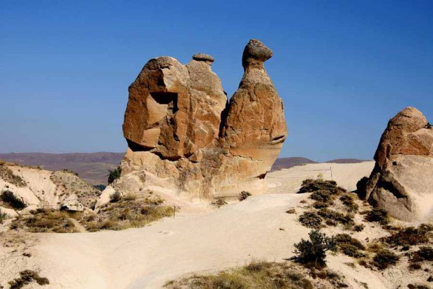 One of rock formation with camel shape