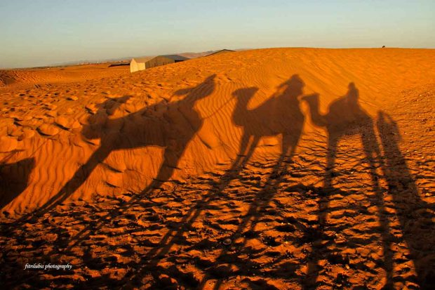 Location: Zagora, Morocco..
