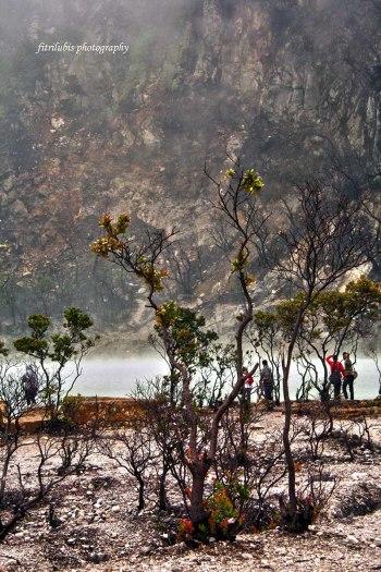 Scenery at White Crater (Kawah Putih)