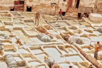 The tanneries