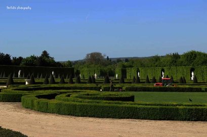 The garden that I snapped from the palace