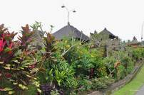 Colorful plants decorating every house at Penglipuran